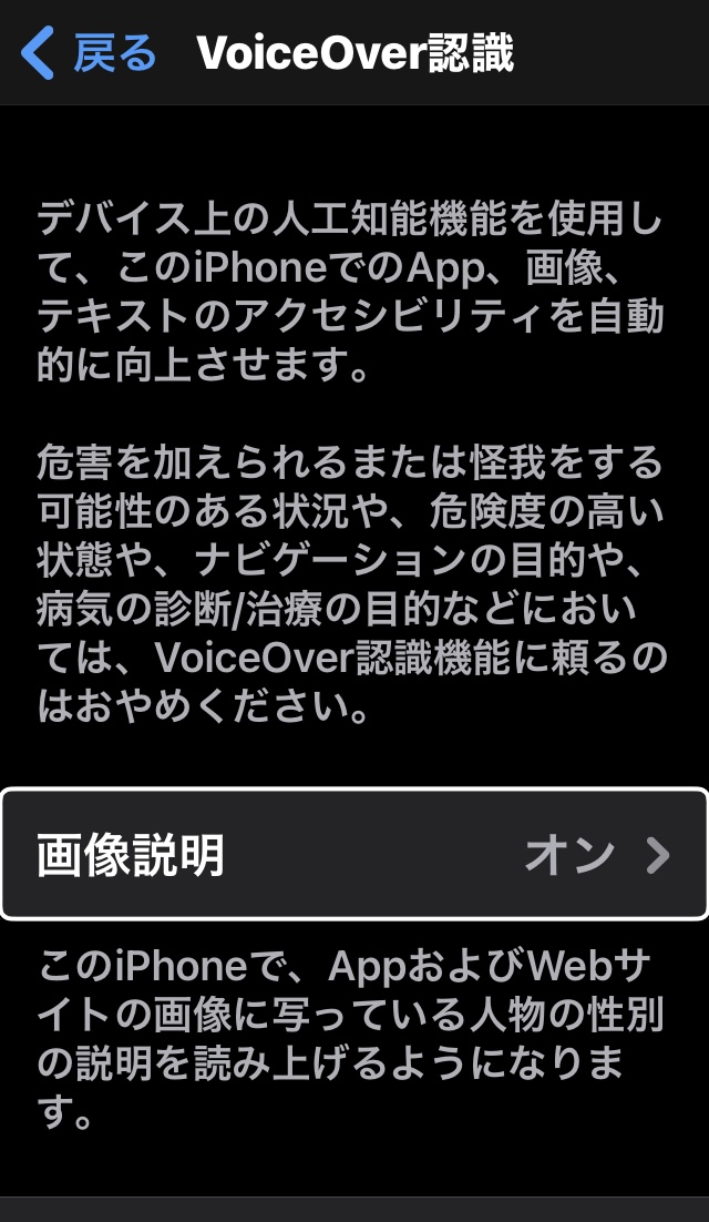 iPhoneのVoice Over認識画面(画像説明メニューの表示あり)